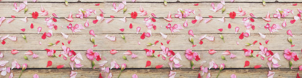 Flowers and leaves on wood texture. View from above Stock Image