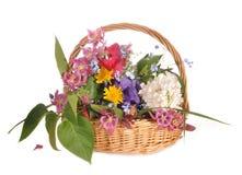 Flowers lie in a basket. Garden flowers lie in a wattled basket Stock Photography
