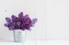 Flowers of lilac royalty free stock photo