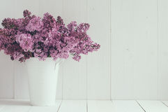 Flowers of lilac Royalty Free Stock Photography