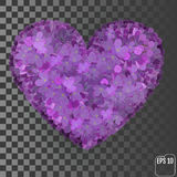 Flowers of a lilac in the form of a heart  on a transpar Royalty Free Stock Image