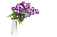 Flowers lilac in a vase Stock Photos