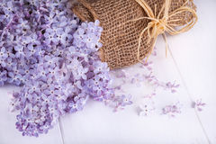 Flowers of lilacs Royalty Free Stock Photo