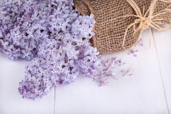 Flowers of lilacs Stock Photo