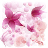 Flowers lilies abstraction Royalty Free Stock Photography