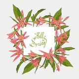 Flowers Lilies square frame, hello spring. Hand Drawn Flowers Lilies Isolated vector illustration in line art style. square frame, hello spring Template card Stock Image