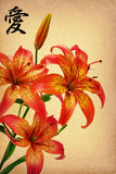Flowers lily  and hieroglyph  love Royalty Free Stock Images
