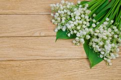 Flowers of the lily of the valley on a wooden table.  Royalty Free Stock Photography