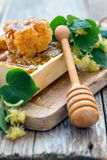 Flowers of lime and honey in the comb. Royalty Free Stock Images