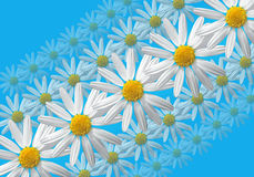 Flowers linear composition Royalty Free Stock Image