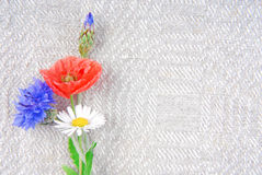 Flowers on linen cloth border frame Royalty Free Stock Image