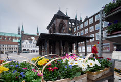 Flowers at Lubeck town square. Germany Royalty Free Stock Photos