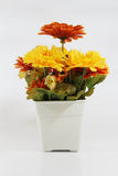 Flowers made from plastic. Flower pots made of plastic White background Royalty Free Stock Photography
