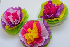 Three colorful tissue paper flowers Royalty Free Stock Image