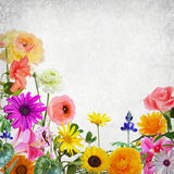 Flowers magic world Stock Images
