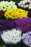 Flowers market Royalty Free Stock Image