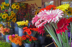Flowers at the market Stock Photos