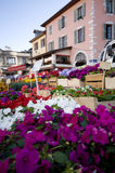 Flowers market Stock Photos