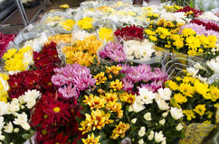 Flowers in market Royalty Free Stock Images