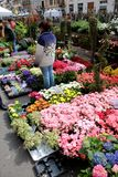 Flowers market, Milan Royalty Free Stock Photo