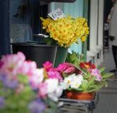 Flowers at market Stock Photos