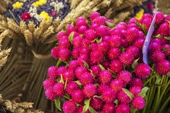Flowers in the market of Provence, France. Pink, purple, yellow flowers, bouquets, lavender and wheat in the market of Provence, France Stock Photography