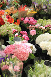Flowers at a market Stock Photos