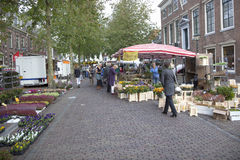 Flowers on the market in Wijk bij Duurstede Royalty Free Stock Photography