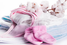 Flowers mature cotton. Flowers blossoming cotton children's clothes, hat and socks Stock Photos