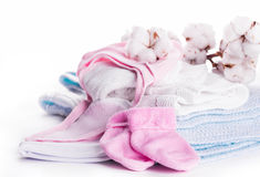 Flowers mature cotton. Flowers blossoming cotton children's clothes, hat and socks Stock Image