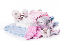 Flowers mature cotton. Flowers blossoming cotton children's clothes, hat and socks Stock Images
