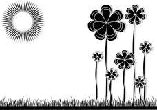 Black and white Flowers on meadow. Flowers on meadow in black and white Royalty Free Stock Images