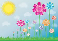 Flowers on meadow. In colors Stock Images