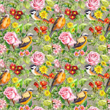 Flowers, meadow grass, birds. Seamless floral pattern. Watercolor Stock Photo