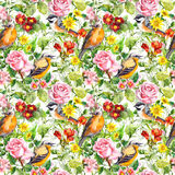 Flowers, meadow grass, birds. Seamless floral wallpaper. Vintage flowers, wild herbs. Seamless repeating floral and herbal pattern. Watercolor Royalty Free Stock Images