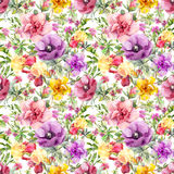 Flowers in meadow. Seamless floral pattern. Watercolor royalty free stock photo