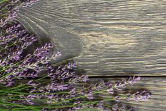 Flowers of medicinal lavender plant lie on wooden surface royalty free stock image