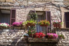 Flowers in medieval street of Assisi town, Italy Stock Photos