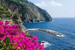 Flowers By The Mediterranean Royalty Free Stock Image