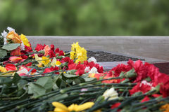 Flowers memorial. 9 may, day of victory, memory Royalty Free Stock Photo