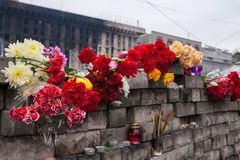 Flowers in memory of murdered on Euromaidan Royalty Free Stock Photography