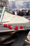 Flowers in memory of murdered on Euromaidan Stock Photo