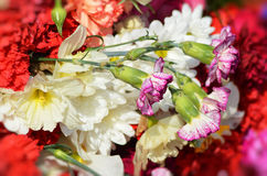 Flowers of memory to fallen soldiers. Stock Images