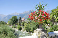 Flowers in Meran Stock Images