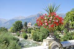 Flowers in Meran Stock Images