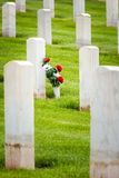 Flowers in a military graveyard Stock Image