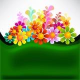 Flowers mix Stock Image
