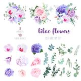 Flowers and mix of greenery big vector collection. Violet and white hydrangea, pink rose and ranunculus, purple carnation, lilac orchid, iris, medinilla, bell royalty free illustration