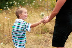 Flowers for Mom. A proud smiling little 4 year old boy gives a small bouquet of wild flowers to his mother. Shallow depth of field stock images