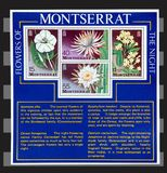 Flowers of Montserrat stamps. The Night Flowers of Montserrat sheeet stamps isolated Royalty Free Stock Photography